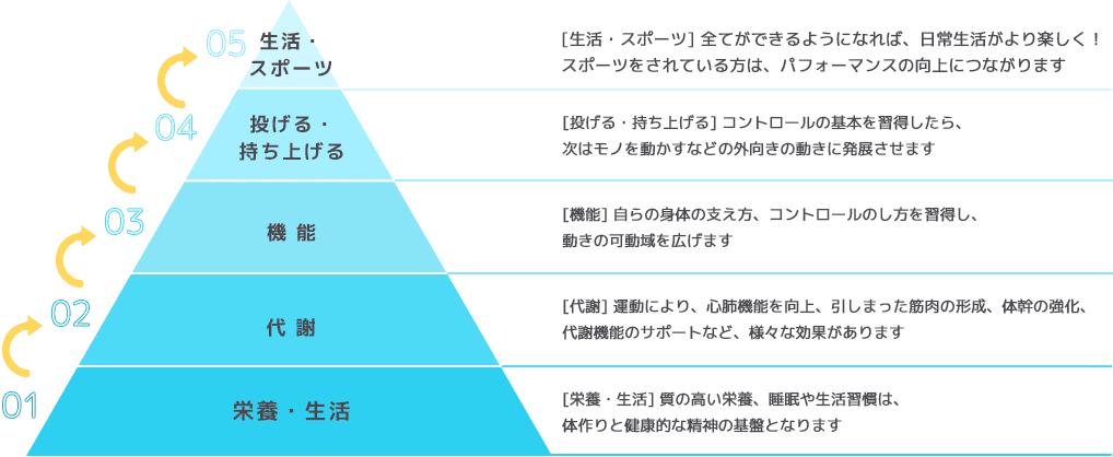 クロスフィット理論におけるピラミッド図